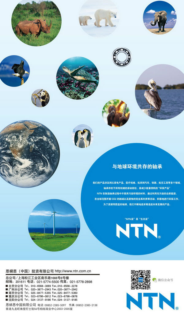 NTN(CHINA)INVESTMENT CORPORATION